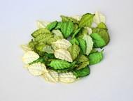 Набор листьев без стебельков 4,5х2,5 см Зеленый микс 20 шт