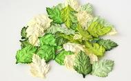 Листья шиповника без стебельков зеленый микс 3,5х2,5 см 20 шт