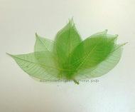 Листья скелетированные зеленый 9х3 см 10 шт