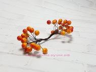 Ягодки глянцевые, цвет оранжево-красный, пучок 40 ягодок, диаметр ягодки 11 мм
