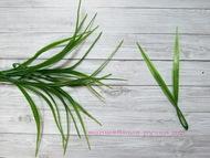 Искусственная зелень, осока, цвет зеленый, длина 14 см, двойная веточка, 10 шт