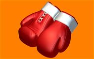 Пластиковая форма для мыла 482 - Перчатки бокс