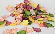 Листья шиповника без стебельков Осенний микс 3,5х2,5 см 20 шт