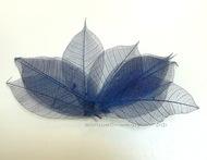 Листья скелетированные синий 9х3 см 10 шт